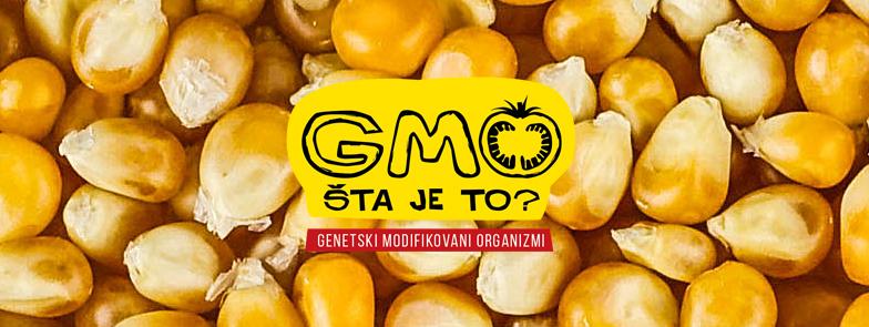 gmo (1)