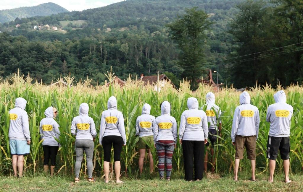 GMO_sta_je_to_kukuruz