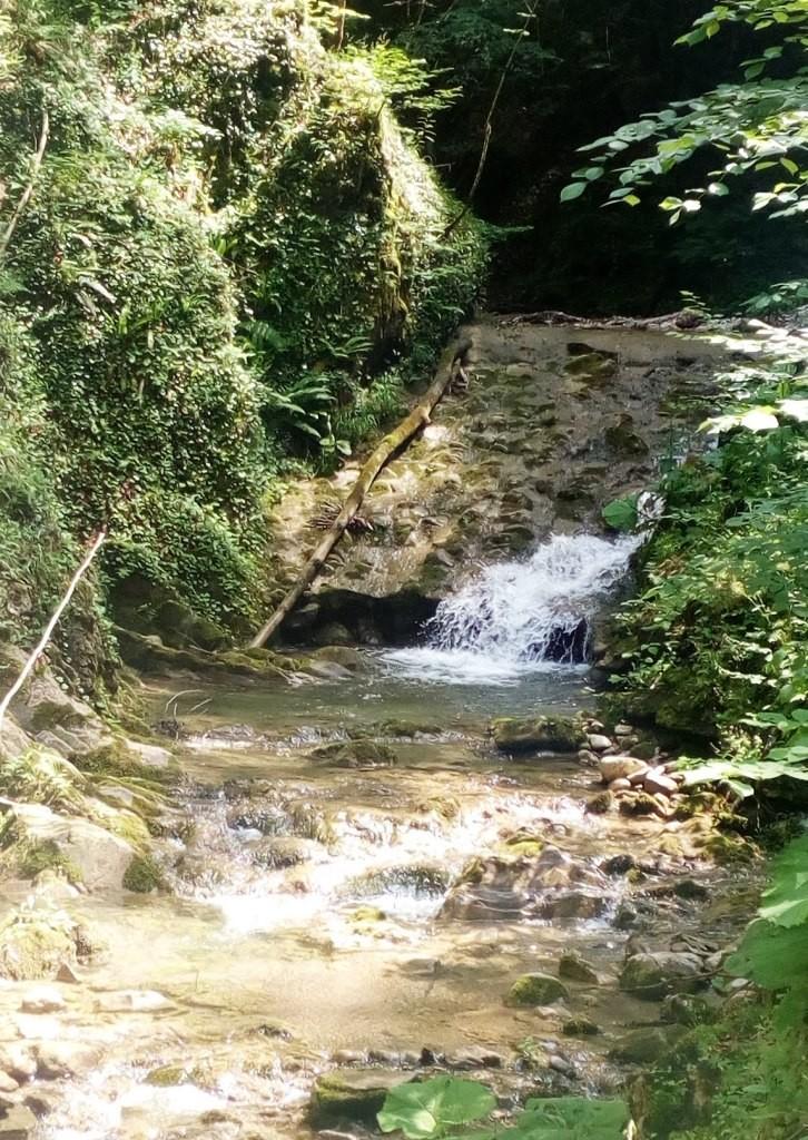 Rijeka Vrbanja ispod vodozahvata